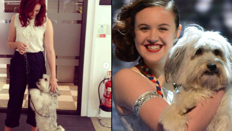 Britain's Got Talent Star Pudsey The Dog Has Tragically Died Aged 11